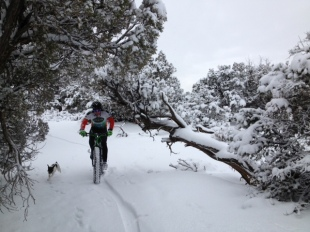 James on his Fat Bike on the snow on the Alien Trail.